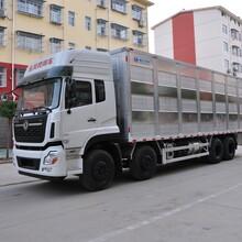 东风天龙畜禽运输车猪仔运输车成品猪运输车农牧厂家直销图片