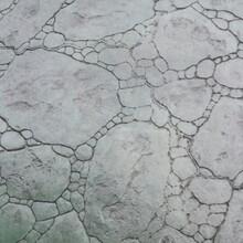 湖南混凝土压模地坪铺装,岳阳艺术仿生压花地坪做法图片