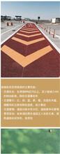 云南昆明人行道彩色路面路面施工圖片