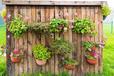 杭州庭院設計:4件小東西,讓你的庭院超有格調,確定不學學嗎