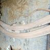 江苏柚木线条各种尺寸