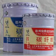 潍坊市碳纤维胶供应商图片
