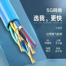 遠傳光速5G綜合網線帶光纖網絡線一體線圖片