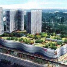 平湖小产权房十号公馆2700户大型花园社区华南城地铁口50米图片