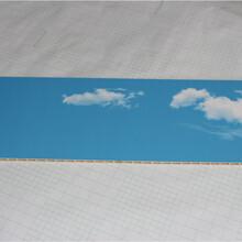 鄂州市竹木纤维pvc扣板款式新颖2020行情价格图片