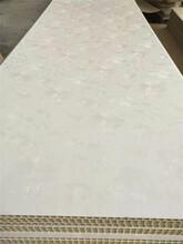 供应450宽竹木纤维板价格墙面墙裙吊顶材料生产厂优游注册平台2020价格图片