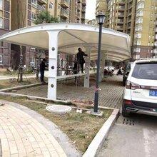 上海膜结构车棚厂家直销图片