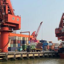 上海到惠州惠東的海運集裝箱船務運輸公司圖片