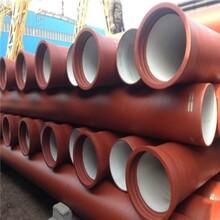 上海排污球墨铸铁管货源充足图片
