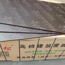 湘潭建筑模板桥梁模板厂家图片