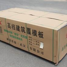 宣城建筑模板桥梁模板供应商图片