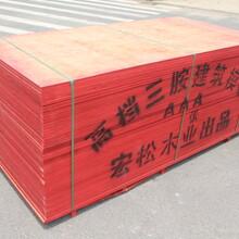 邯郸建筑模板桥梁模板供货商图片