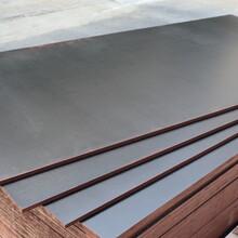 宿州建筑模板桥梁模板加工价格图片