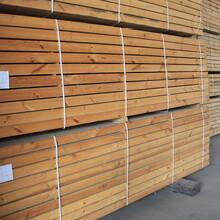 衡水建材木方图片