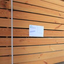 蚌埠木方供货商图片