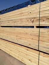 宿州木方供货商图片