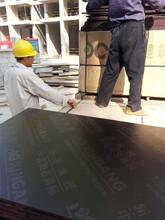 长沙覆膜板建筑模板生产厂家图片