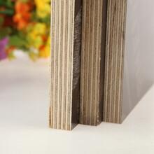 嘉兴覆膜板建筑模板供应商图片