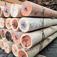 铜陵枕木垫木价格图片