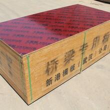 青岛建材竹胶板供货商图片