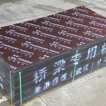 深圳平面竹胶板供应商图片