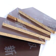 黄石建材竹胶板批发价格图片