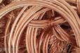 滕州電纜回收電纜回收公司滕州精選廠家