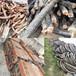 龙岩电缆回收(附近)龙岩电缆回收厂家