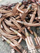 莆田电缆回收废旧电缆线回收莆田电缆回收多少钱