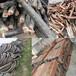 莆田电缆回收(当天行情)莆田电缆回收厂家