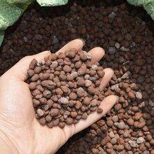 建筑材料保温隔热陶粒建筑卫生间回填陶粒陶粒价格陶粒厂家图片