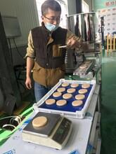 德州虾饼成型机供应商图片