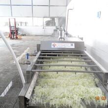 滨州蒸煮漂烫厂家价格图片
