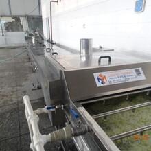 深圳蒸煮漂烫设备图片