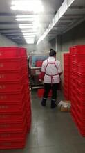 商丘洗筐机供应商图片