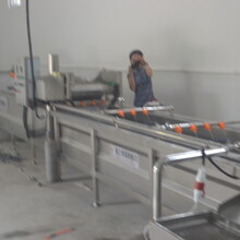 葫芦岛托盘清洗机生产厂家图片