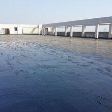 龙门县防水工程公司价格图片