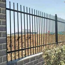 海东锌钢护栏供应商图片