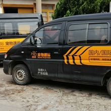 云南宠物托运公司无中间商赚差价昆明宠物托运图片