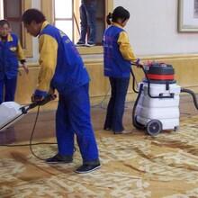 高陵區地毯清洗服務圖片