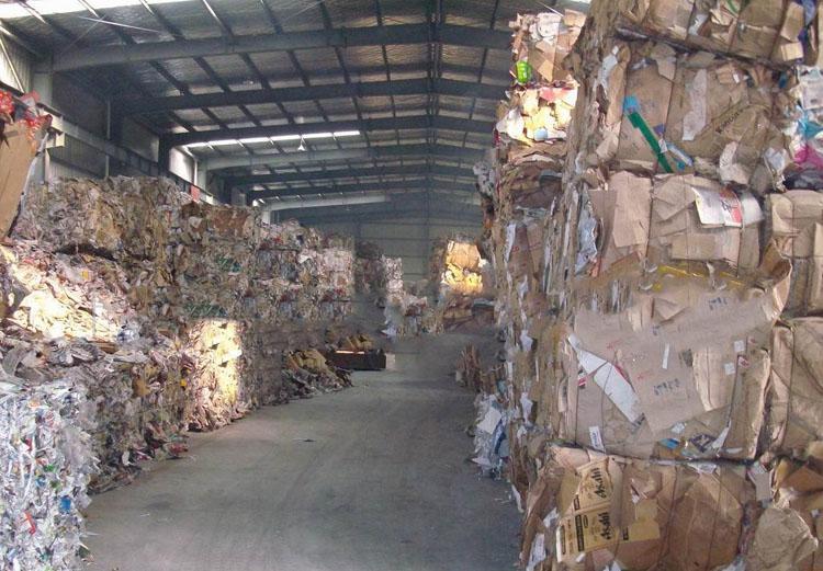吴江区废纸板回收服务