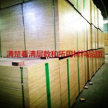 全整芯桉木一级√建筑模板图片