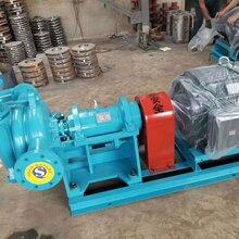 普洱压滤机入料泵生产厂家图片