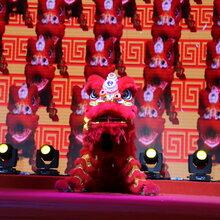 婚庆开业舞龙舞狮梅花桩舞狮编程灯光狮视频互动舞狮