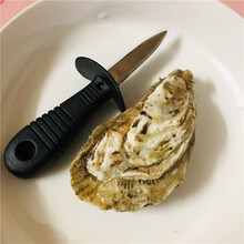 抄底價乳山生蠔批發價格源頭廠家3兩/只乳山牡蠣產地電話圖片