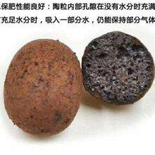 福建陶粒厂优游平台1.0娱乐注册直销反正回填陶粒建筑陶粒欢迎购买图片
