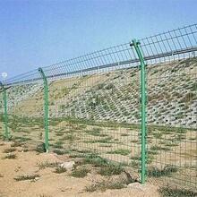清远护栏网供货商图片