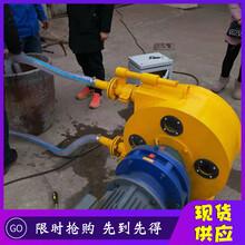 河南省平頂山市耐腐蝕軟管泵規格圖片