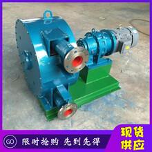 廣東省深圳市U型軟管泵參數圖片