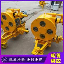 貴州省遵義市小型軟管泵規格圖片